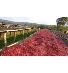 """Кофе """"Эфиопия Гигеса для эспрессо """" в зернах"""