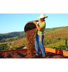 """Кофе """"Марагоджип Мексика"""" в зернах"""