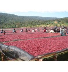 """Кофе """"Эфиопия Сидамо для фильтра"""" в зернах"""
