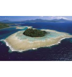 """Кофе """"Папуа - Новая Гвинея"""" в зернах"""